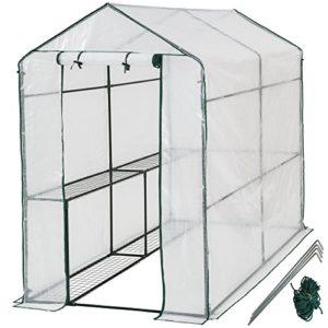 Serra da giardino in acciaio e PVC per piante - modelli differenti - (186x120x190cm | No. 401861)